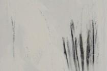 akrilika,karvouno se kamba 24x30cm